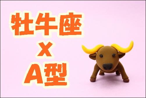 牡牛座xA型の画像