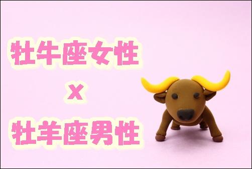 牡牛座女性x牡羊座男性の画像