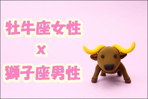 牡牛座女性x獅子座男性の画像