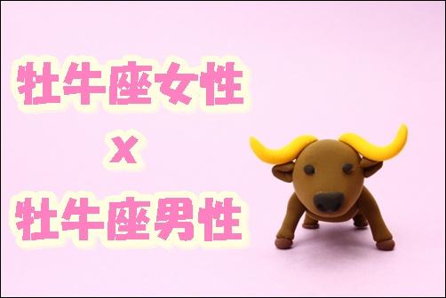 牡牛座女性x牡牛座男性の画像